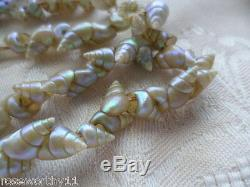 Antique Vintage Old Jewelry Aboriginal Australian Maireener Sea Shell Necklace