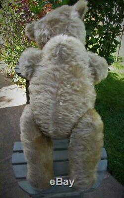Beautiful Antique Old Mohair Steiff Teddy Bear 18 Inches